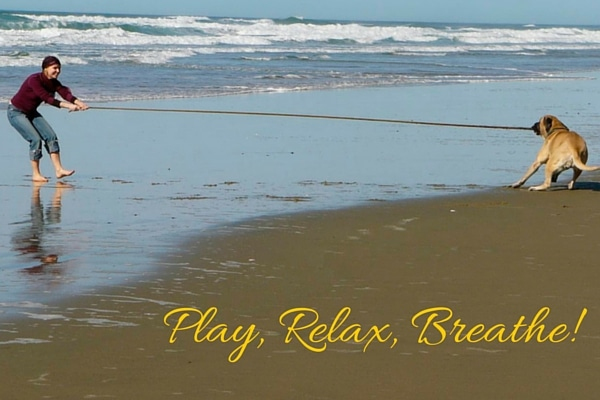 Play-Relax-Breathe